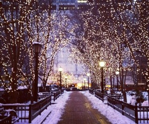 beautiful, lights, and street image