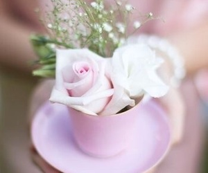 coffee pink roses morning image