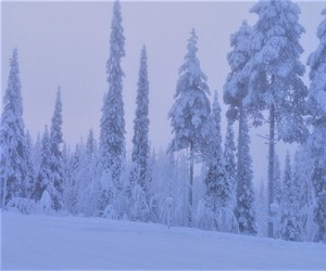 finland, snow, and winter image