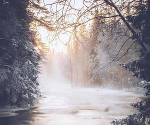 beautiful, cold, and photography image