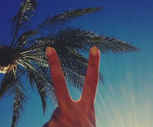 nails, new year, and palms image