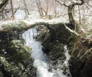 bridge, snow, and winter image