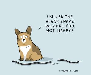 dog, tumblr, and funny stuff image