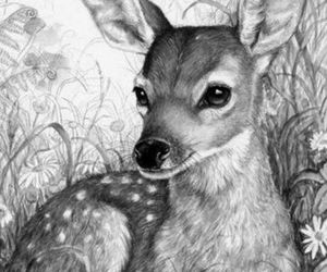 deer, fawn, and pencil image