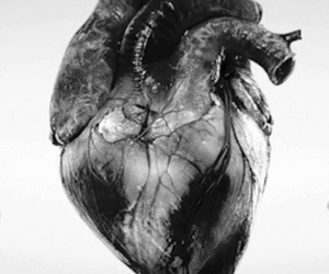 heart, gif, and blood image