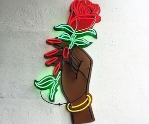 rose, neon, and red image