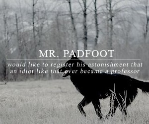 harry potter, sirius black, and padfoot image