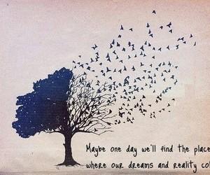 birds, tree, and Dream image