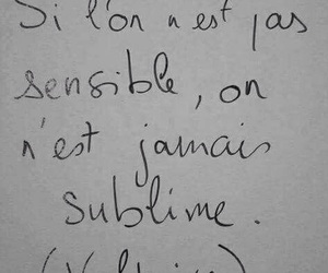 french, quote, and voltaire image