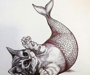 cat, fish, and mermaid image