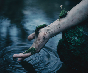 water, hand, and nature image