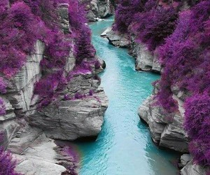 purple, nature, and river image