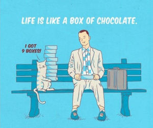 cat, chocolate, and life image