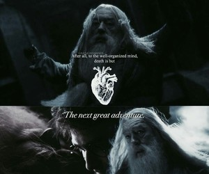 albus dumbledore, harry potter, and edit image