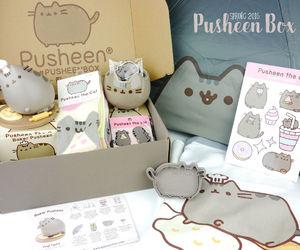 cat, kawaii, and pusheen image