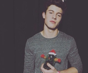 shawn mendes, shawn, and christmas image