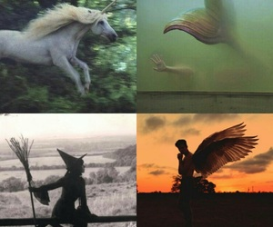 mermaid, unicorn, and witch image