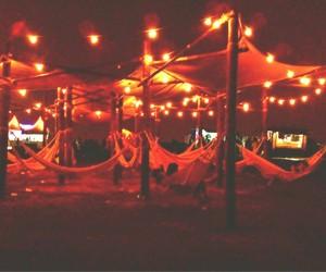 lights, Lollapalooza, and peace image