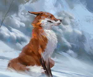 art, cute, and fox image