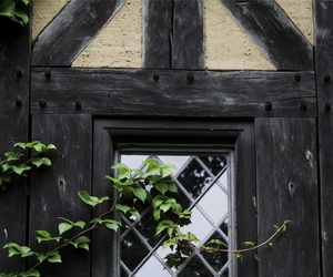 aesthetic, cottage, and window image