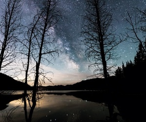 forest, lake, and milky image