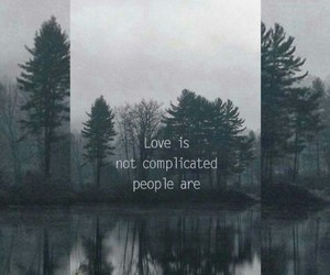 background, love, and forest image