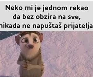 Image by Marija Nikolic
