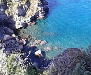blue, holiday, and sea image