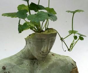 plants, art, and sculpture image