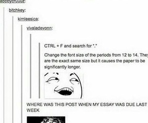 funny, essay, and humor image