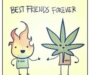 weed, fire, and friends image