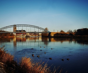 nature, nature photography, and magdeburg image