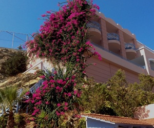 flowers, Greece, and hotel image