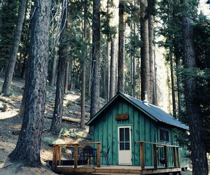 forest, cabininthewoods, and landscape image