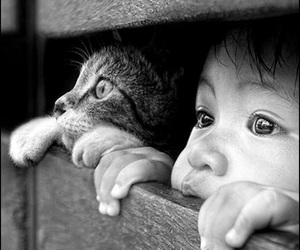 cat, child, and boy image