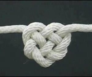 heart, knot, and rope image