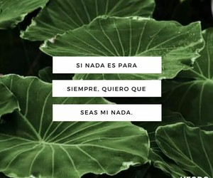frases, alternativo, and consejos image