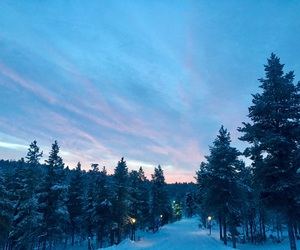 aesthetic, beauty, and finland image