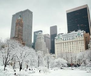 new york, nyc, and new york city image