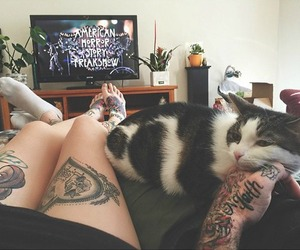 cat, tattoo, and american horror story image