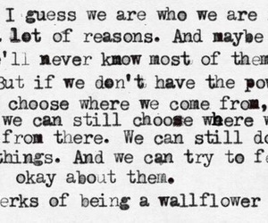 perks, perks of being a wallflower, and quote image