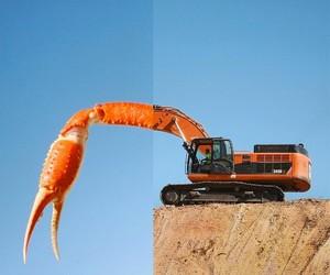 orange, photography, and photo manipulation image