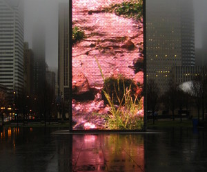city, pink, and chicago image
