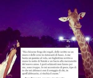 Chanel Iman, frasi, and giraffa image