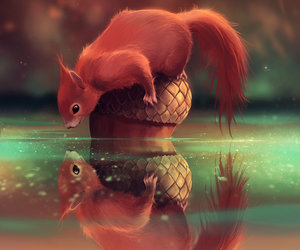 acorn, reflection, and squirrel image