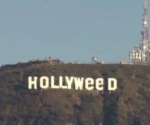 hollywood and weed image