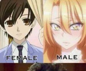 anime, ouran, and manga image