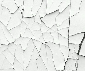 classy, pattern, and wallpapers image