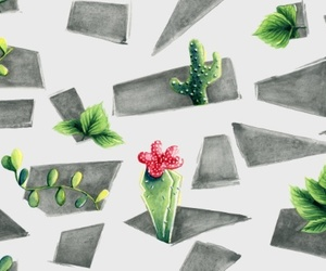 background, plant, and cacti image