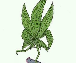 weed, high, and skate image